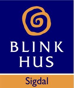 Blink Hus Sigdal
